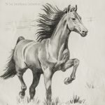 "Nr.02 ""Pferd"", 30 x 40 cm, Kohlestift auf Malpapier, 2004"
