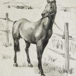 """Nr.09 """"Pferd"""", 30 x 40 cm, Kohlezeichnung, 2004"""