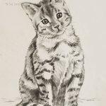 """Nr.10 """"Katze"""", 20 x 30 cm, Kohlezeichnung, 2003"""