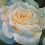 """Nr.215 """"Weiße Rose"""", Ölgemälde"""