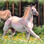 """Nr.60 """"Weißes Pferd"""", 40 x 30 cm, Pastell Auf Velourpapier, 2006"""