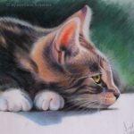 """Nr.72 """"Katze"""", 40 x 30 cm, Pastell Auf Velourpapier, 2004"""