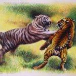 """Nr.77 """"Zwei Kämpfende Tiger"""""""