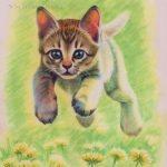 """Nr.83 """"Springende Kätzchen"""", 30 x 40 cm, Pastell auf Velourpapier, 2007"""