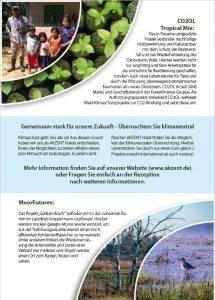 Flyer: Viabono-Pannama-Projekt